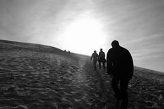 Dune Ascention - by h de c