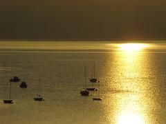 galicia de oro x (-Merce-) Tags: espaa seascape sunrise catchycolors geotagged gold spain corua paisaje galicia amanecer seashore lanscape oro sada catchycolorsgold mmbmrs radebetanzos geo:lat=4336288305223425 geo:lon=8242157321438825 eligeetucolor