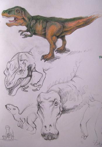 Dinosaur studies