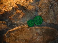 espirales verde (uNica en su eSpeCie) Tags: agujas