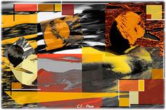 mallard(S) (Giulio Speranza) Tags: red orange art birds yellow composition artwork colours arte squares shapes uccelli giallo mallard rosso colori mondrian disegno forme arancione composizione astrattismo germanoreale abstractionism quadrati