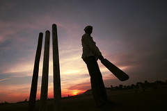 Cricket fever!
