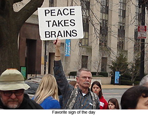 Peace-takes-brains