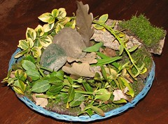 nature collection centerpiece