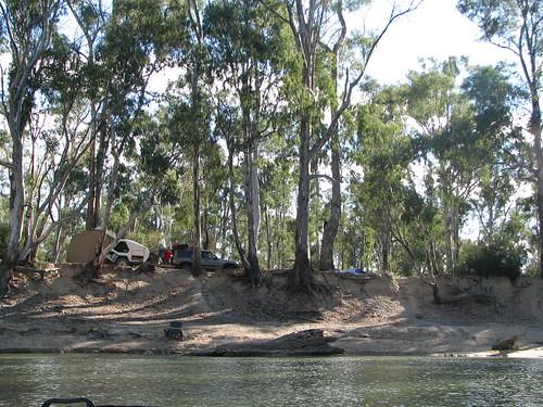 Murray River 032
