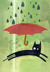 a los gatos nunca les llueve (medialunadegrasa) Tags: black rain umbrella cat juan carlos textures