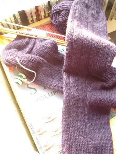 Calcetines para el sambo