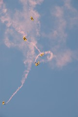 Long Ride Down (clydeorama) Tags: pink sky army fly flying andrews aircraft smoke airshow demonstration 2008 skydiver parachute afb airforcebase airdisplay jsoh goldenknights jointservicesopenhouse andrewsafbmd
