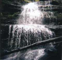 waterfall (imustmumble) Tags: tree 120 film nature mediumformat waterfall holga rocks pennsylvaniagrandcanyon
