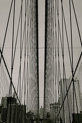 (Micl G.Riva) Tags: nyc bw newyork manhattan diagonal brooklynbridge rombo