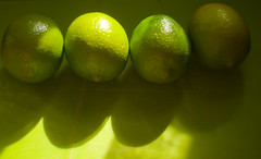 four limes (Hazy Days) Tags: green fruit citrus lime