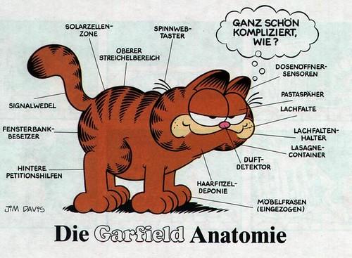 Garfield Auf Deutsch