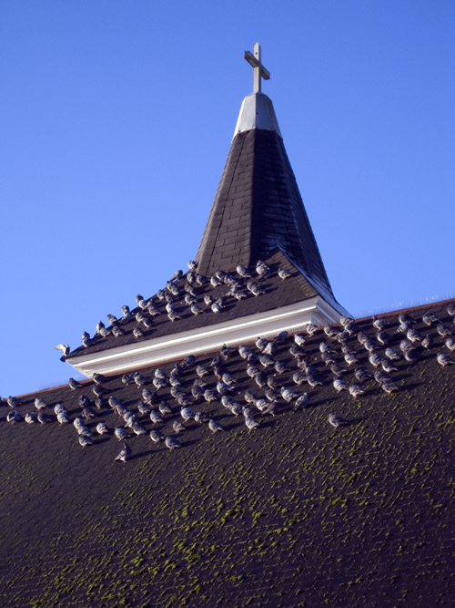 church rooftop, Ketchikan, Alaska