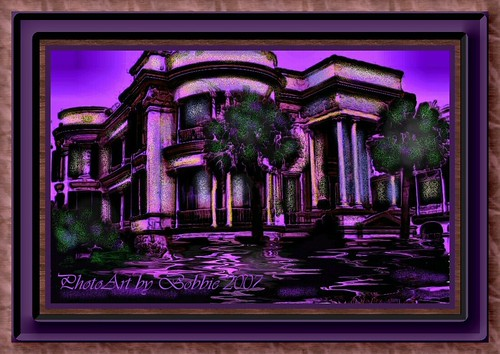 Grape Reflections