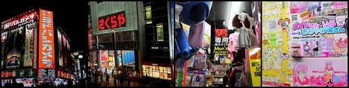 Shinjuku and Akihabara
