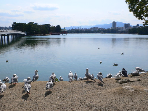 Oohori Park