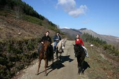 Horse Riding in Rioja