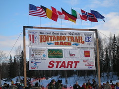Official Starting Marker (mcoughlin) Tags: sign alaska start willow iditarod restart