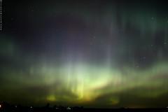 Aurora by Muvv