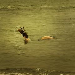 spectacle (brookeshaden) Tags: ocean sea selfportrait water seamonster brilliant seacreature sighting spectacle humanish brookeshaden
