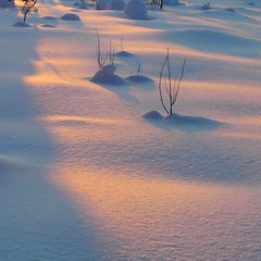 Touching me softly . . . (Lapintiira) Tags: winter light shadow ice nature colors beauty landscape frost softness sublimemasterpiece