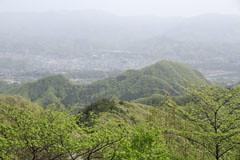 高柄山から見た御前山