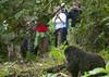 Tourists taking pictures of gorilla in Rwanda (Eric Lafforgue) Tags: africa park animal forest outdoors gorilla tourist bamboo rwanda vegetation afrika greenery foret primate parc commonwealth bambou afrique eastafrica touriste gorille takingpicture mountaingorilla centralafrica 9516 kinyarwanda ruanda gorillaberingei gorillatrekking afriquecentrale bigape רואנדה gorilledesmontagnes 卢旺达 르완다 盧安達 republicofrwanda руанда رواندا ruandesa