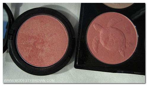 Echo vs Turtles Blusher2