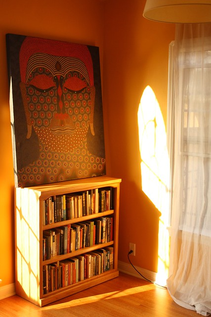 Golden afternoon light in my living room