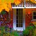 Alegria! - by Denis Collette...!!!