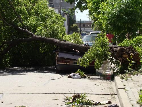 Después de la tormenta II