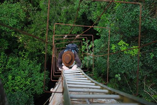 Climbing To Tree platform