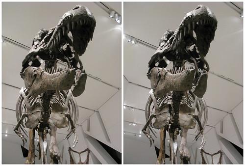 3D Dinosaur 09
