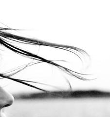 thalkes hair (Wegor Muetze) Tags: questfortherest