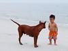 so.. what's up? (AraiGodai) Tags: interesting explore fynn trat araigordai anawesomeshot thairidgebackdog หาดบานชื่น banchuenbeach คลองใหญ่ ตราด raigordai araigodai