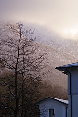 winter glow (springm / Markus Spring) Tags: trees winter mountain fog backlight germany geotagged bavaria afternoon creativecommons badreichenhall berchtesgadenerland predigtstuhl lightzone markuswspring springm betterthangood absolutelystunningscapes markusspring
