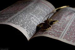 Grandmother's Bible Bookmark (raisinsawdust - (aka: withaneyephotography)) Tags: word gold nikon dof cross religion bible ribbon christianity healing scripture bookmark holybible redletter d80 nikond80 overtheexcellence
