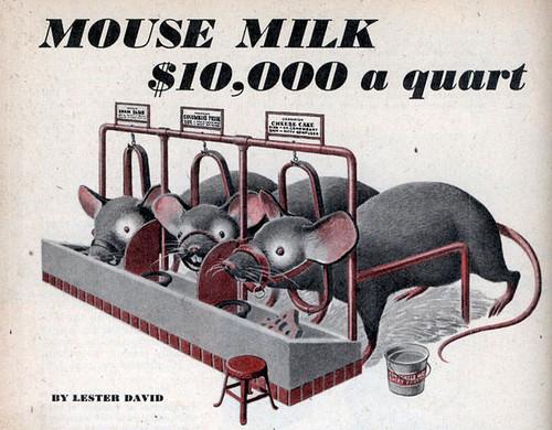 Mouse Milk worth $10,000 a qt