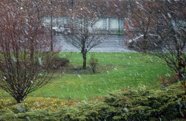 snow_848am_32808