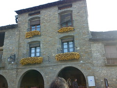 Ainsa (Patataasada) Tags: paisajes ainsa alquezar balcn pueblos maiz pirineo mazorcas n73 panochas nseriesphotoclub