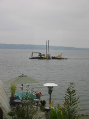 3 Tree Point on Puget Sound Washington State (AGA~mum) Tags: pugetsound benches tugs tugboats barges bulkhead coastalliving 3treepoint watervessels emptychairsbenches besidethebeach