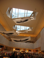 The birds that can't fly (blind_donkey) Tags: roof architecture modern design helsinki interiors space bookshop