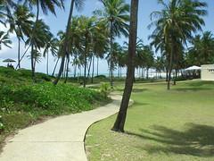 Costa do Sauípe - BA (Robson Borges) Tags: brazil praia brasil paisagem grama bahia goiânia caminho coqueiro paraíso goiás costadosauípe belo mouseion robsonborges