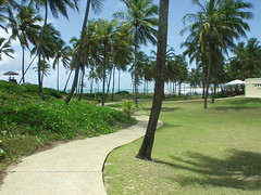 Costa do Saupe - BA (Robson Borges) Tags: brazil praia brasil paisagem grama bahia goinia caminho coqueiro paraso gois costadosaupe belo mouseion robsonborges