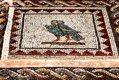 Owl (gornabanja) Tags: old travel vacation espaa holiday detail bird tourism sevilla andaluca spain nikon ruins europe d70 roman antique mosaic seville abroad owl andalusia andalusien spanien romanruins itlica