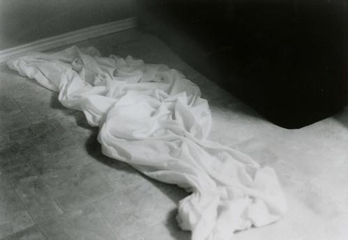 willon- fallen sheet echo
