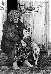 what more do you need? (Tanjica Perovic) Tags: poverty life door old portrait people blackandwhite bw woman dog pets true animals cat puppy real happy photography hope kitten truth sad humanity serbia poor documentary social oldhouse simplicity barefoot document reality oldwoman emotional simple tender tenderness touching feelings reportage strenght humaninterest catsanddogs srbija threshold nomakeup cuteanimals poorpeople blueribbonwinner pirot noshoes interestingpeople flickrsbest passionphotography thelittledoglaughed foolforchrist onephotoweeklycontest lysergicblackandwhite estremita atqueartificia pirotskicilim thecatwhoturnedonandoff tanjicaperovic pirotski pirotsrbija  tanjicaperovicphotography