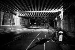 Under the bridge (Digic-Vision) Tags: canon 6d sigma 35mm 14 art night dslr monochrome black white