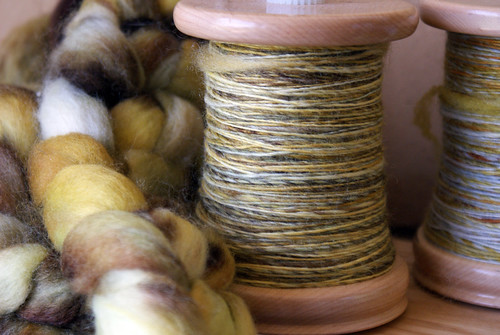 Funky Carolina Forsythia BFL