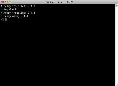 Terminal — zsh — 80×24